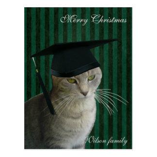 Navidad sabio divertido del gato postal