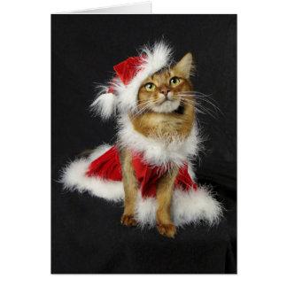 Navidad somalí del gato del pequeño ayudante de tarjeta de felicitación