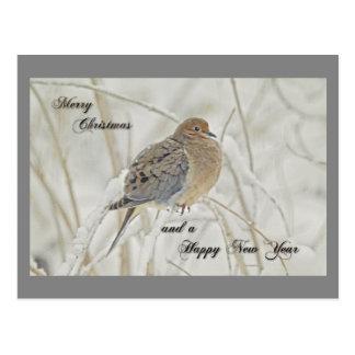 Navidad y saludo del Año Nuevo - paloma de luto Postal