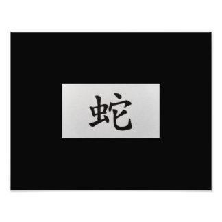 Negro chino de la serpiente de la muestra del fotografias
