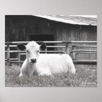 Negro y foto blanca de la cara y del granero póster