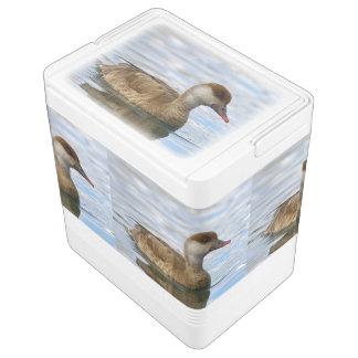 Nevera Para Bebidas Pato femenino del pato de mar, rufina del netta