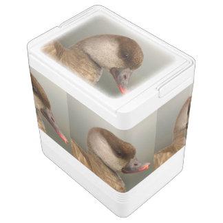 Nevera Para Bebidas Pato femenino del pato de mar, rufina del netta,