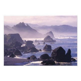 Niebla de la mañana a lo largo de la costa de Oreg Fotos
