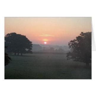 Niebla de la mañana tarjeta pequeña