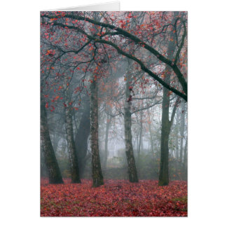 Niebla en bosque del otoño con las hojas rojas tarjeta de felicitación