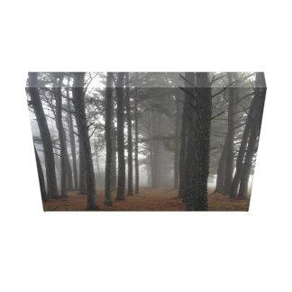 Niebla en un bosque impresion de lienzo