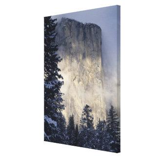 Niebla que envuelve la montaña lona estirada galerías