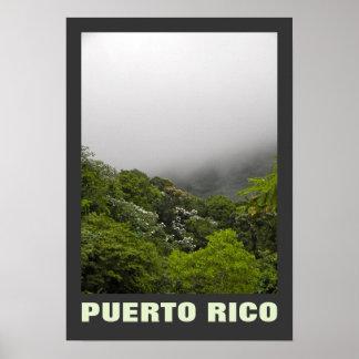Niebla y EL tropical Yunque Puerto Rico de los Póster