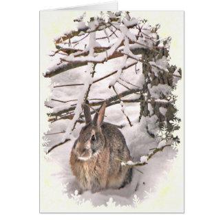 Nieve Bunny Dia del Padre Felicitacion