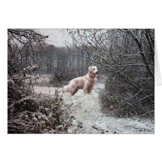 Nieve de la tarjeta del golden retriever