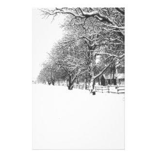 Nieve del invierno en la calle de la conferencia papeleria