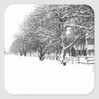 Nieve del invierno en la calle de la conferencia pegatina cuadrada