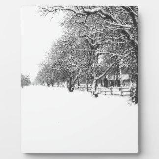 Nieve del invierno en la calle de la conferencia placas