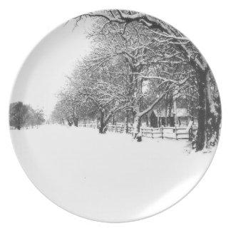 Nieve del invierno en la calle de la conferencia plato para fiesta