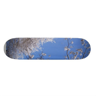 Nieve en árboles patin