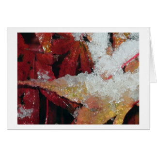 Nieve que cubre las hojas de arce japonesas tarjeta de felicitación