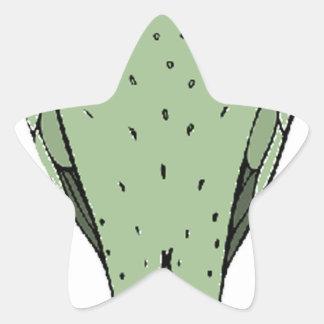 ningún pájaro principal pegatina en forma de estrella