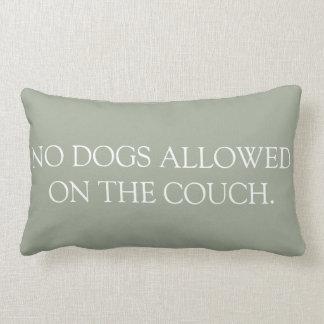 Ningunos perros permitieron en la almohada del