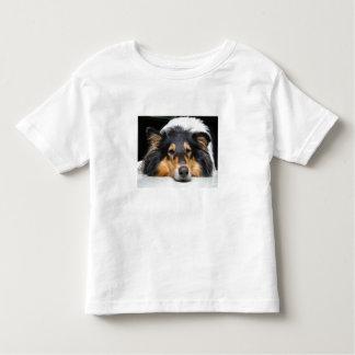 Niños hermosos del perro del collie, chicas, camisetas