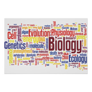 No. 4 de Wordle de la biología Póster