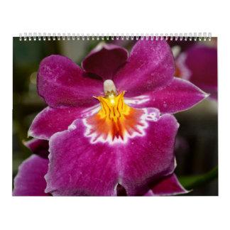 No. 5 del calendario del amor de la flor
