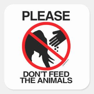 No alimente por favor los elefantes pegatina cuadradas personalizada