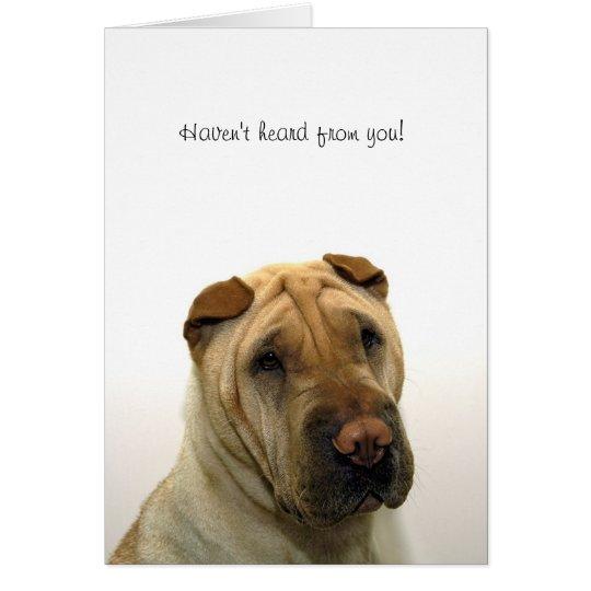 No han oído de usted tarjeta de felicitación