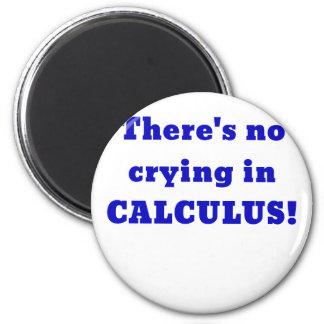 No hay griterío en cálculo imán
