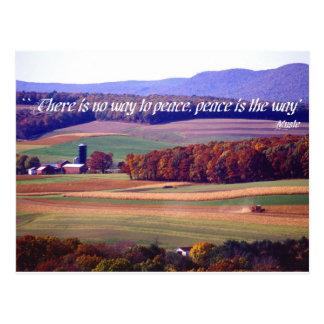 No hay manera a la paz paz es la manera tarjetas postales