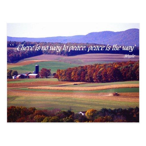 No hay manera a la paz, paz es la manera tarjetas postales