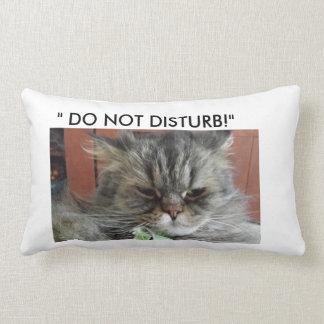 """""""NO PERTURBE"""" LA ALMOHADA DEL CAT"""