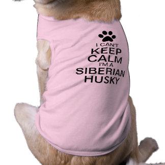 No puede guardar el perro tranquilo del husky