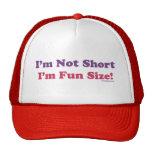 ¡No soy corto, yo soy tamaño de la diversión! Gorro