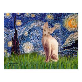Noche estrellada - gato poner crema de Sphynx Postal