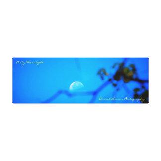 noche iluminada por la luna temprana envuelta lienzo