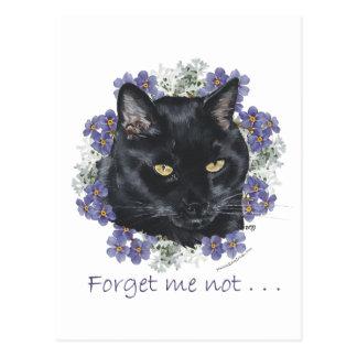 Nomeolvides negra del gato de Shorthair Postal