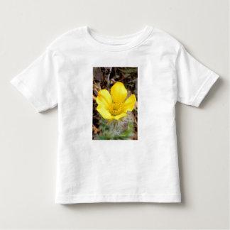 Norteamérica, los E.E.U.U., Alaska, nacional de Camiseta De Bebé