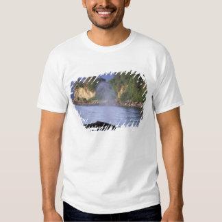 Norteamérica, los E.E.U.U., Alaska, paso interior Camisetas