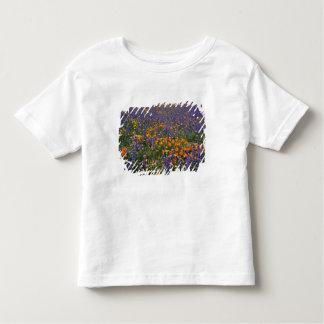 Norteamérica, los E.E.U.U., California, Los Camiseta