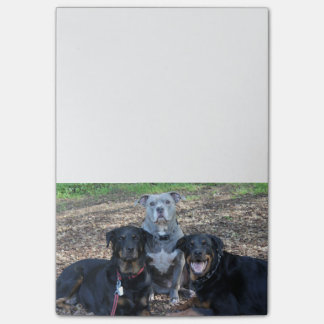 Notas de la imagen de la familia del perrito