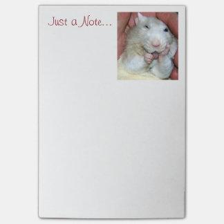 Notas de post-it de Bridget de la rata del mascota