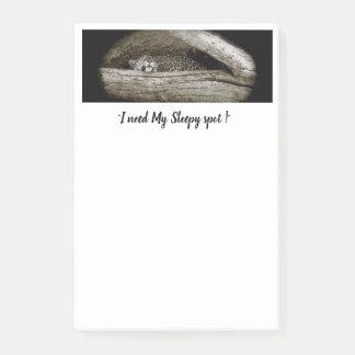 """Notas de post-it de los """"puntos soñolientos"""", 4 x"""