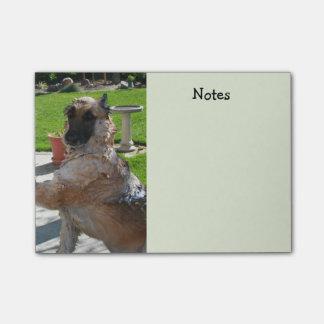Notas de tiempo del baño del pastor alemán