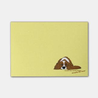 Notas Post-it® Cavalier rey Charles perro de aguas - Simply the