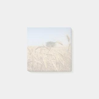 Notas Post-it® Cosecha del trigo de primavera