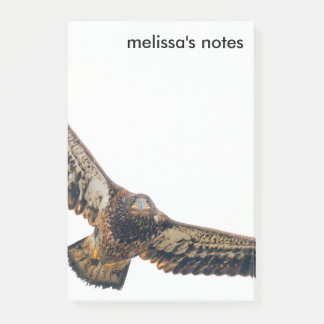 Notas Post-it® Eagle calvo imponente hace un paso elevado
