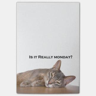Notas Post-it® El gato divertido de Brown del abisinio odia lunes