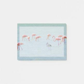 Notas Post-it® Multitud gris y rosada de los flamencos en el lago