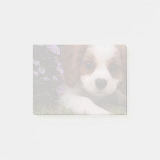 Notas Post-it® Perrito arrogante del perro de aguas de rey